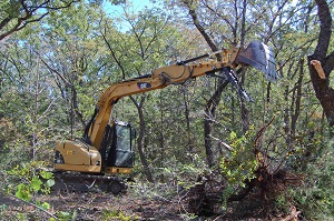 Land Clearing Hunters Creek FL